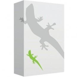 RunTime Innes GEKKOTA POUR WINDOWS/Support Clé USB