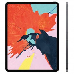 Apple iPad Pro 12.9 pouces 256 Go Wi-Fi + Cellular Gris Sidéral