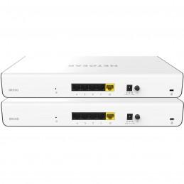 Netgear Routeur VPN Insight BRK500 (Pack de deux Routeurs VPN Insight BR500)